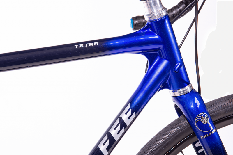 Whisky Select - Calfee Tetra Adventure Classic Bike - Closeup of Headtube and top of fork